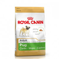 Royal Canin Mops Adult, корм для собак породы мопс