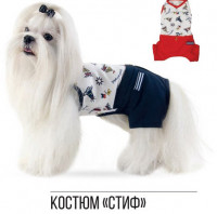 Pet Fashion Костюм Стиф