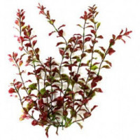 Растение Tetra DecoArt Plantastics Red Ludwigia, 23см